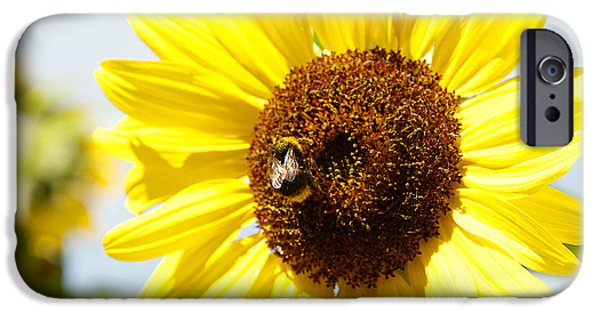Pollinate iPhone Cases - Bee iPhone Case by Les Cunliffe