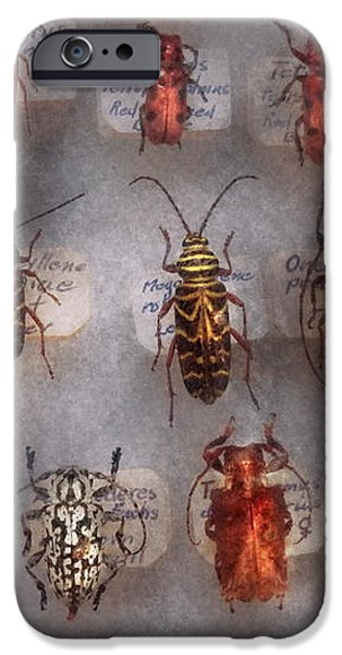 Beetles - The usual suspects  iPhone Case by Mike Savad