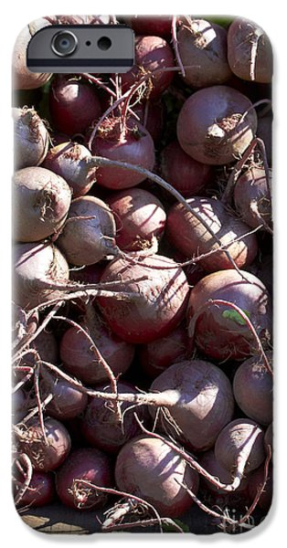 Farm Stand Photographs iPhone Cases - Beets iPhone Case by Tony Cordoza