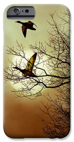 Before a Winter Sky iPhone Case by Bob Orsillo