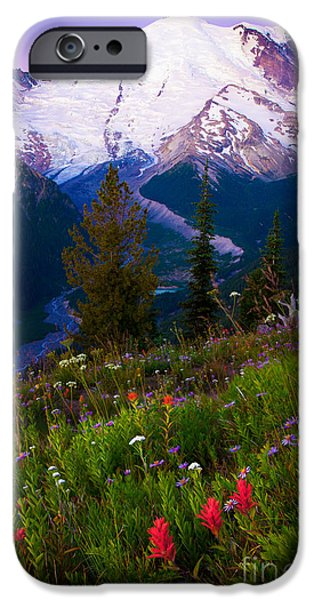 White River iPhone Cases - Before Dawn at Mount Rainier iPhone Case by Inge Johnsson