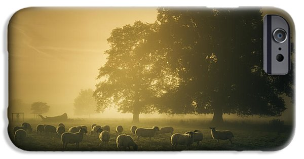 Gathering Photographs iPhone Cases - Before dawn gathering iPhone Case by Chris Fletcher