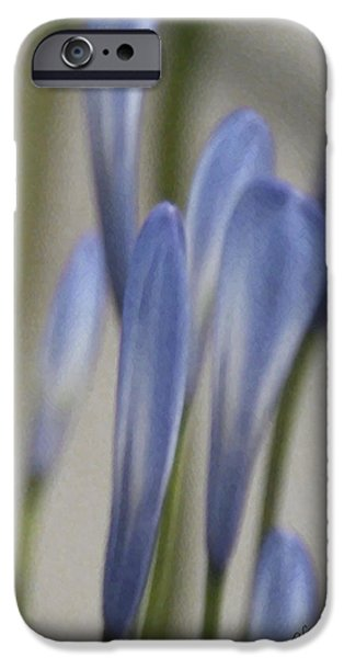 Before - Lily Of The Nile iPhone Case by Ben and Raisa Gertsberg
