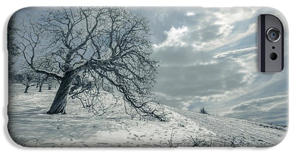 Winter Scene iPhone Cases - Begin the melting procedure iPhone Case by Chris Fletcher