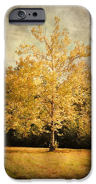 Autumn Scenes Photographs iPhone Cases - Beginning of Autumn iPhone Case by Jai Johnson