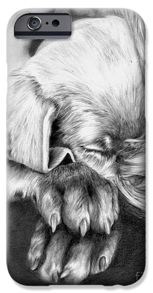 Weimaraners iPhone Cases - Behind Closed Paws iPhone Case by Sheona Hamilton-Grant