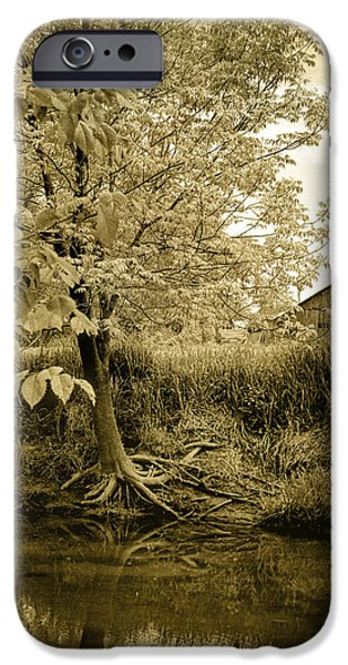 Tree Roots Photographs iPhone Cases - Behind Eds Barn iPhone Case by Randall Nyhof