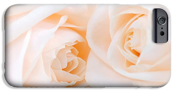 Freshness iPhone Cases - Beige roses iPhone Case by Elena Elisseeva