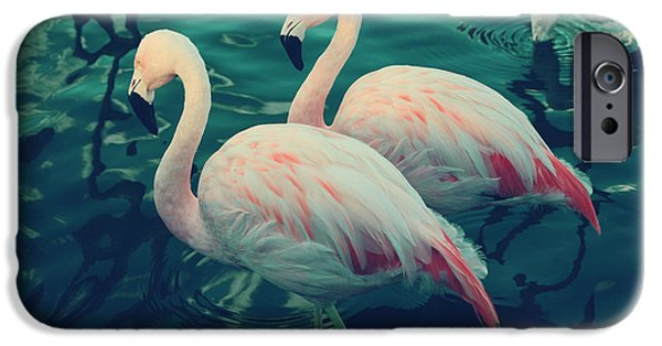 Flamingoes iPhone Cases - Being With You iPhone Case by Laurie Search