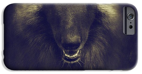 Dog Iphone Case iPhone Cases - Belgian Tervuren Portrait iPhone Case by Wolf Shadow  Photography