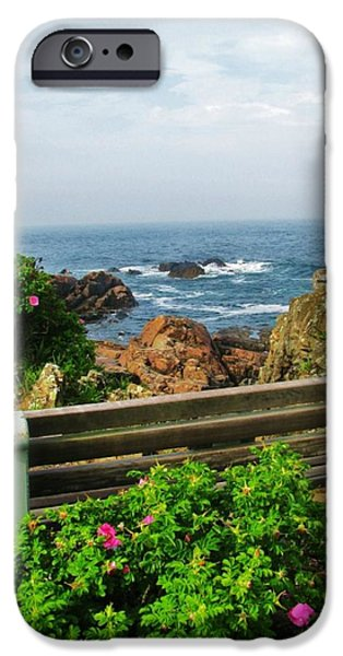 Marginal Way iPhone Case by Diane Valliere