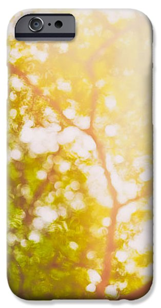 Red Abstract iPhone Cases - Beneath a tree  14 5199   Diptych  Set 1 of 2 iPhone Case by Ulrich Schade