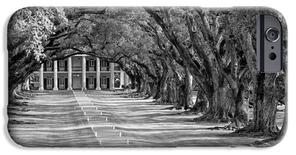 Overhang iPhone Cases - Beneath Live Oaks bw iPhone Case by Steve Harrington