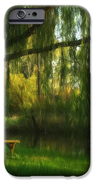 Beneath the Willow iPhone Case by Lori Deiter