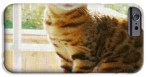 Textured Tapestries - Textiles iPhone Cases - Bengal Cat Duvet Cover iPhone Case by Barbara Griffin