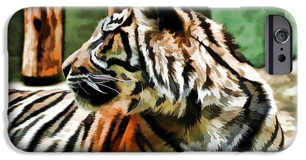 Mangrove Forest iPhone Cases - Bengal Tiger iPhone Case by Bridget Jones