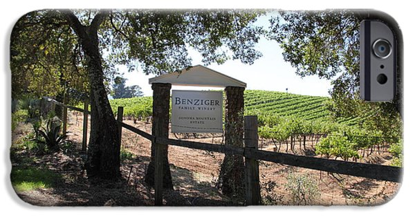 Pastoral Vineyard iPhone Cases - Benziger Winery In The Sonoma California Wine Country 5D24592 iPhone Case by Wingsdomain Art and Photography