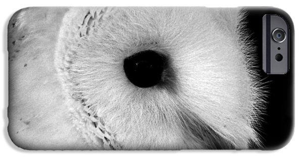 Colored Owls iPhone Cases - Bernie the Barn Owl iPhone Case by Chris Whittle