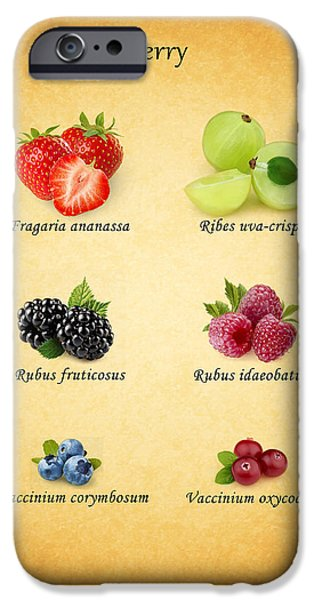 Berry iPhone Case by Mark Rogan
