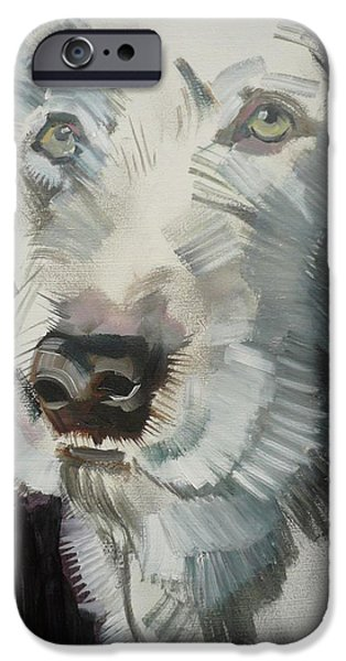 Dog Head iPhone Cases - Bertie, 2012 Oil On Board iPhone Case by Sally Muir