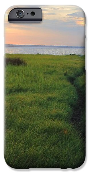 Colonial Parkway iPhone Cases - Beside the James iPhone Case by Jeff Heimlich
