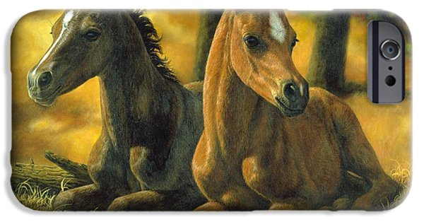 Chestnut Horse iPhone Cases - Best Friends iPhone Case by Crista Forest