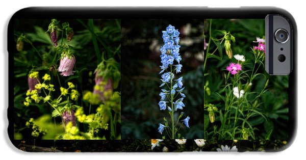 Betty Ford iPhone Cases - Betty Ford Alpine Gardens iPhone Case by Jon Burch Photography
