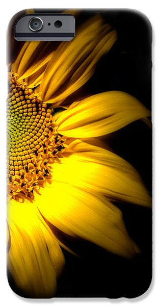 Sunflower iPhone Cases - Between Here And There iPhone Case by Bob Orsillo
