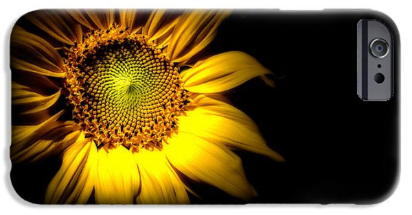 Sunflowers iPhone Cases - Between Here And There iPhone Case by Bob Orsillo