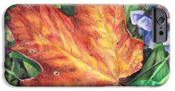Flora Drawings iPhone Cases - Between Summer and Fall iPhone Case by Shana Rowe