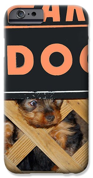 Beware of Dog iPhone Case by John Dauer