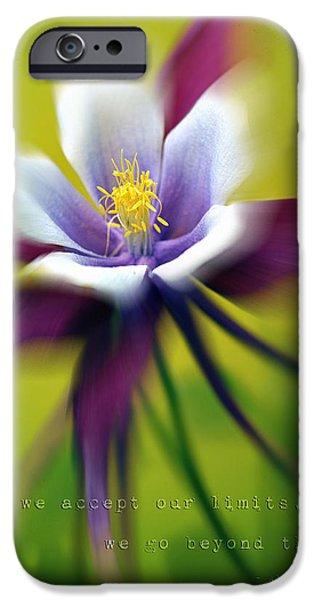 Floral Photographs iPhone Cases - Beyond Limits iPhone Case by Lisa Knechtel