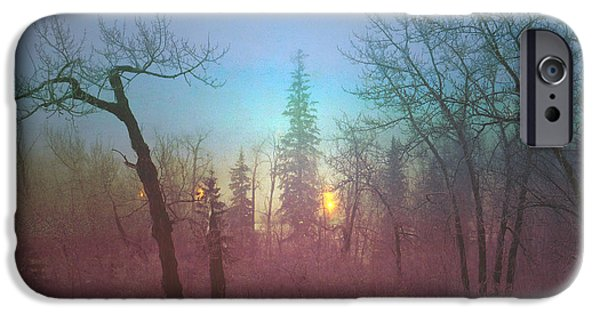 Wintertime iPhone Cases - Beyond The Trees iPhone Case by Carol  Lux Photography