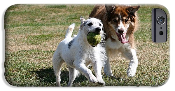 Dog And Tennis Ball iPhone Cases - Bff iPhone Case by Susan Herber