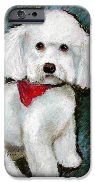 Small Pastels iPhone Cases - Bichon CoCo iPhone Case by Lenore Gaudet