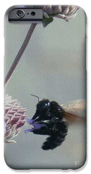 Google Mixed Media iPhone Cases - Big Bad Bumble Bee iPhone Case by Michael Lovell