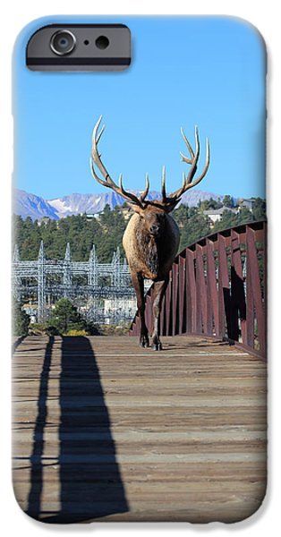 Electrical iPhone Cases - Big Bull On The Bridge iPhone Case by Shane Bechler