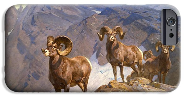 Concept Paintings iPhone Cases - Big Horn Sheep on Wilcox Pass iPhone Case by Rungius
