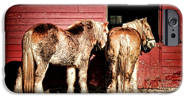 Draft iPhone Cases - Big Horses iPhone Case by Olivier Le Queinec