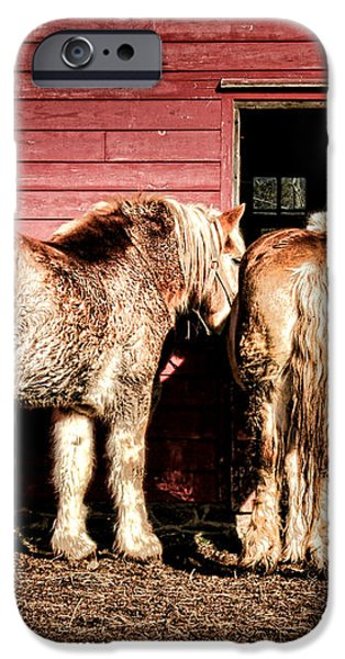 Big Horses iPhone Case by Olivier Le Queinec