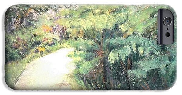 Pathway Pastels iPhone Cases - Big Island Pathway iPhone Case by Mary Lynne Powers