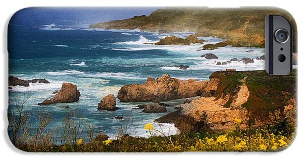 Mist iPhone Cases - Big Sur Spring Beauty iPhone Case by Donna Kennedy