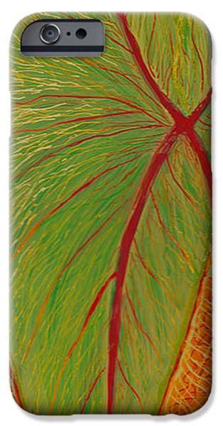 Paint Glass Art iPhone Cases - Big Taro iPhone Case by Anna Skaradzinska