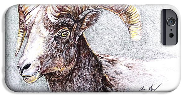 Colorado Drawings iPhone Cases - Bighorn Sheep iPhone Case by Aaron Spong