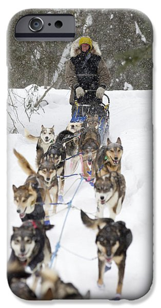 Husky iPhone Cases - Bill Pinkham On The Trail In A Heavy iPhone Case by Jeff Schultz