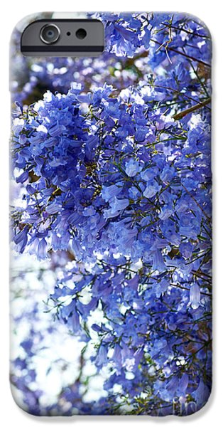 Jacaranda Tree iPhone Cases - Billowy Jacaranda Blossom iPhone Case by Gwyn Newcombe