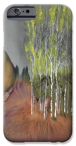 Silk Tapestries - Textiles iPhone Cases - Birch Grove 1 iPhone Case by Carolyn Doe