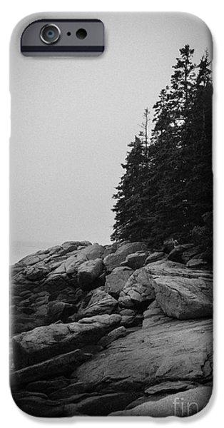 Birch Point Black and White iPhone Case by Belinda Dodd