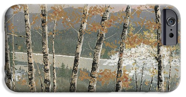 Birch Tree iPhone Cases - Birch Stand iPhone Case by John Wyckoff