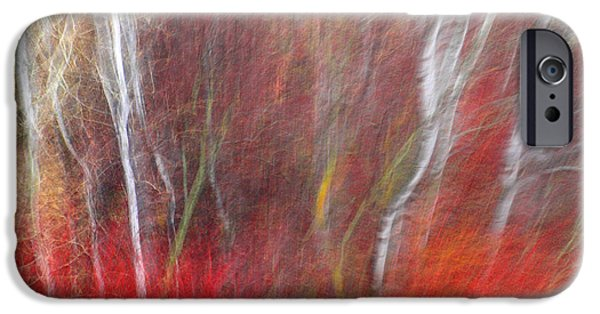 Tara Turner iPhone Cases - Birch Trees Abstract iPhone Case by Tara Turner